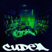 Вдоль всех этих стен (Альтернативная версия) by Cudea