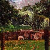 Wild Horses by Kashmir Winter Edwin Raphael