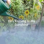 He's Raining in My Sunshine von Bo Gentry