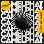 Rabbit Hole (Solardo Remix) de CamelPhat