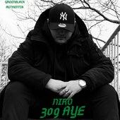 309 Aye von Niro