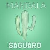 Saguaro von Mandala