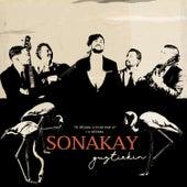 Se Dejaba Llevar por Ti de Sonakay