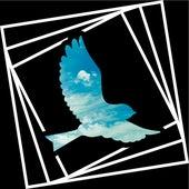 Вольная птица de The B.U.M.S (Brothas Unda Madness)
