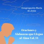 Oraciones y Alabanzas Que Llegan al Alma, Vol. 14 de Congregación María De Jesús