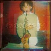 Cassowary de Cassowary