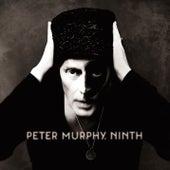 Ninth von Peter Murphy