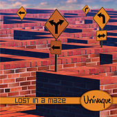 Lost In A Maze by Univaque
