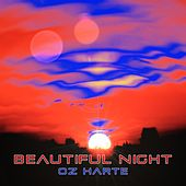 Beautiful Night by Oz Harte