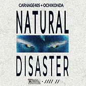 NATURAL DISASTER by Carnage405