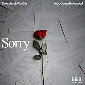 Sorry by De.trxllest