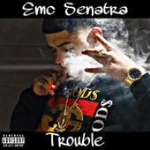 Trouble by Emc Senatra