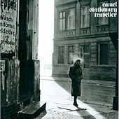 Stationary Traveller by Camel