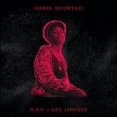 Rebel Daawtaz (feat. Aza Lineage) by Obf