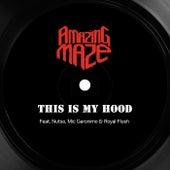 This Is My Hood de Amazing Maze