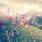 Spring (Ambient) van Slaapmuziek