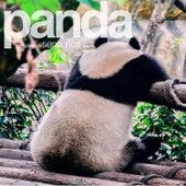 Panda, Vol. 2 (Compiled by Sensorica) von Sensorica