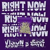 Right Now (feat. Jesse Royal) von Vision Alexander
