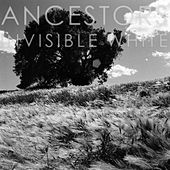 Invisible White de Ancestors