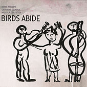 Birds Abide by Barre Phillips