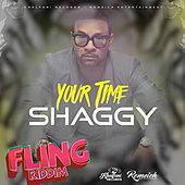 Your Time de Shaggy