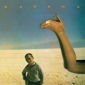 Savana by Savana