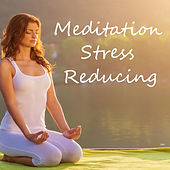 Meditation Stress Reducing by Various Artists