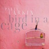 Bird in a Cage by Patty Larkin