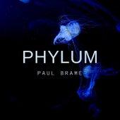 PHYLUM by Paul Brame