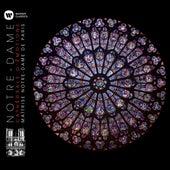 Notre-Dame - Cathédrale d'émotions de Maîtrise Notre-Dame de Paris