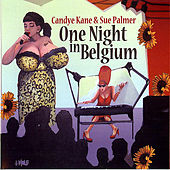 One Night In Belgium von Sue Palmer