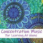 Concentration Music For Learning At Home by Various Artists
