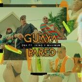 Guaya Pared (feat. J-King y Maximan) von DNA