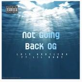 Not Going Back OG by Lu1s Agu1lera