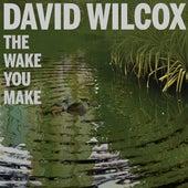 The Wake You Make by David Wilcox