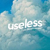 useless (Tyzo Bloom Remix) by A Kid Named Rufus