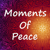 Moments Of Peace by Various Artists
