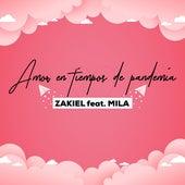 Amor en tiempos de Pandemia (feat. Mila) de Zakiel