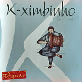 Sanfonado von K-Ximbinho