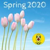 Spring 2020 by Avocado Bar
