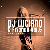 DJ Luciano & Friends, Vol. 6 by Various Artists