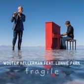 Fragile (feat. Lonnie Park) by Wouter Kellerman