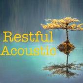 Restful Acoustic von Various Artists