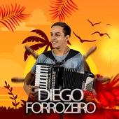 Diego Forrozeiro de Diego Forrozeiro
