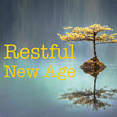 Restful New Age by Various Artists