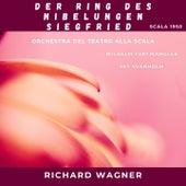 Richard Wagner : Der Ring des Nibelungen - Siegfried (Scala 1950) by Various Artists