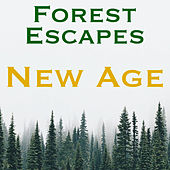 Forest Escapes New Age by Various Artists