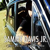 Can't You See I've Got the Blues by Sammy Davis, Jr.