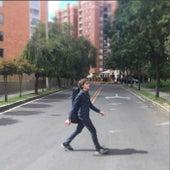 Strings on Abbey Road by Dani-Par
