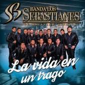 La Vida En Un Trago by Banda Los Sebastianes